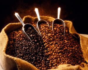 rp_cafe_exportacion.jpg