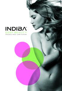 rp_idb-chica2_logo1.jpg